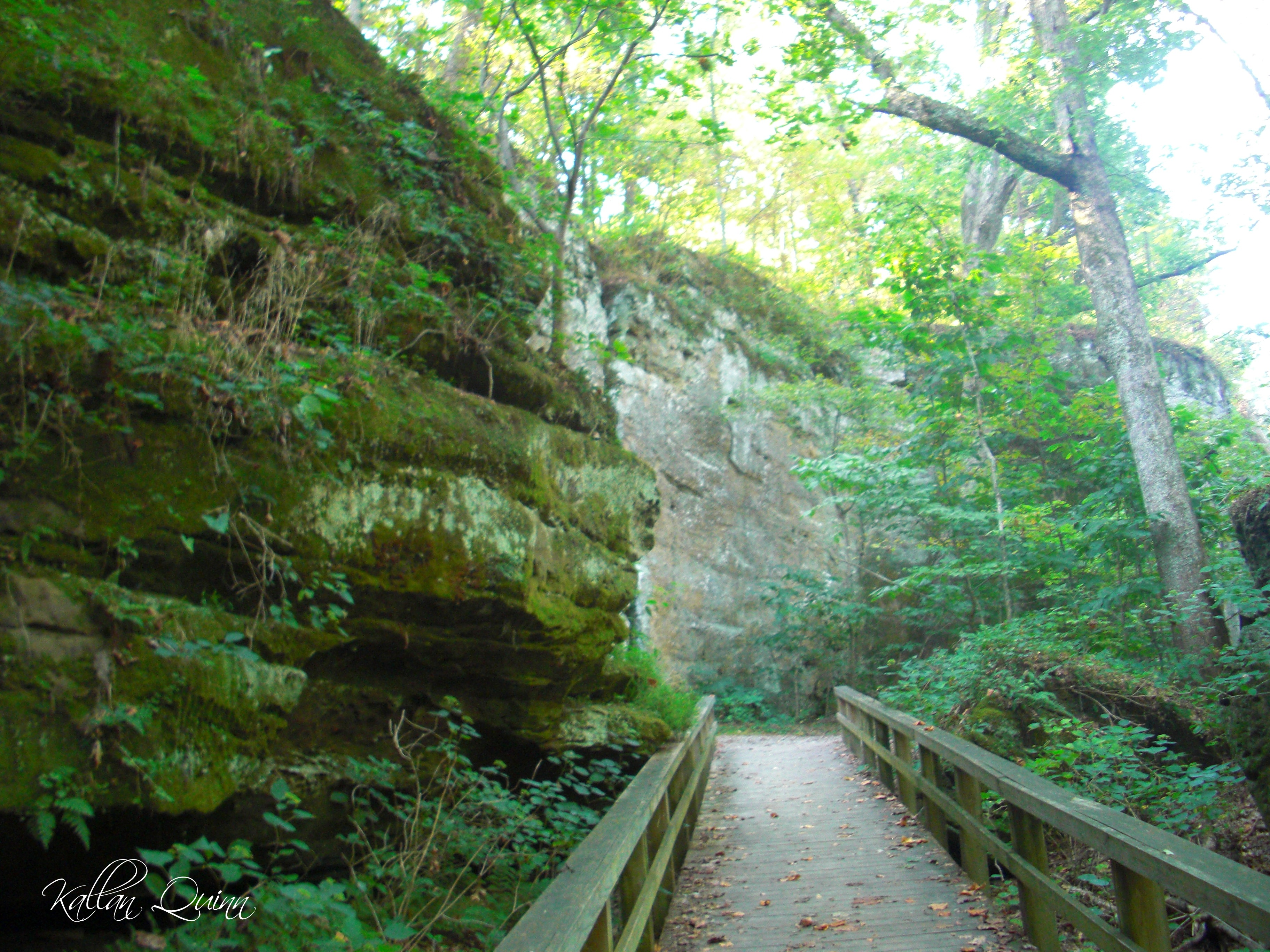 Giant City State Park Illinois Planned Spontaneity