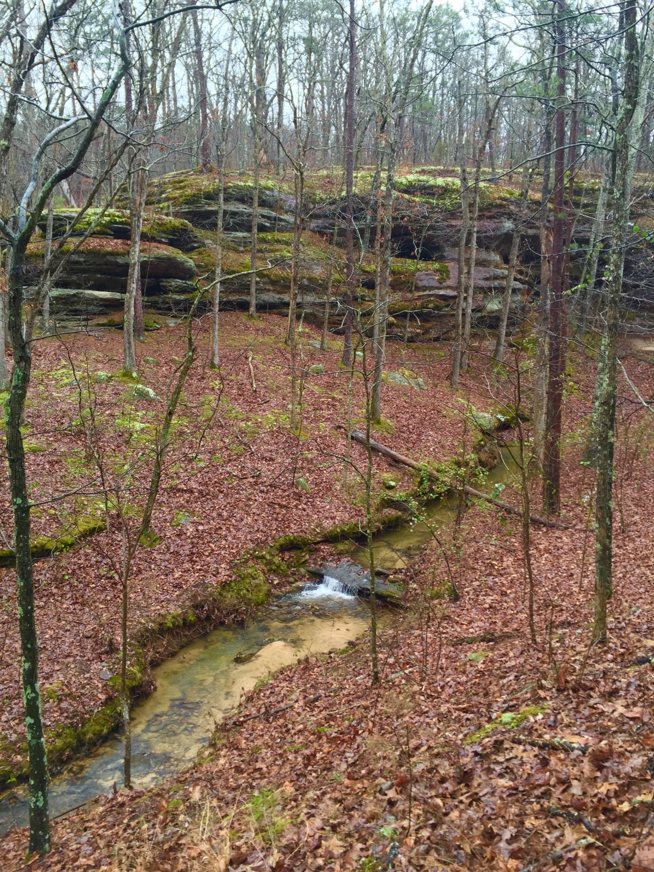 Hickory Canyon (23)