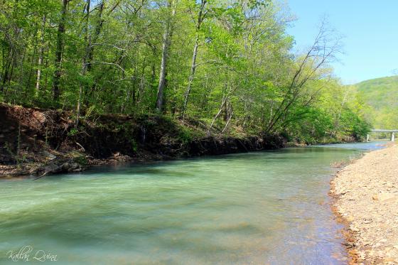 View of Lee Creek