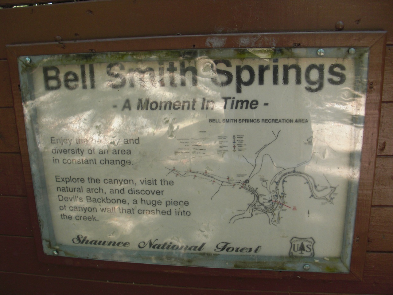 Bell Smith Springs (3)