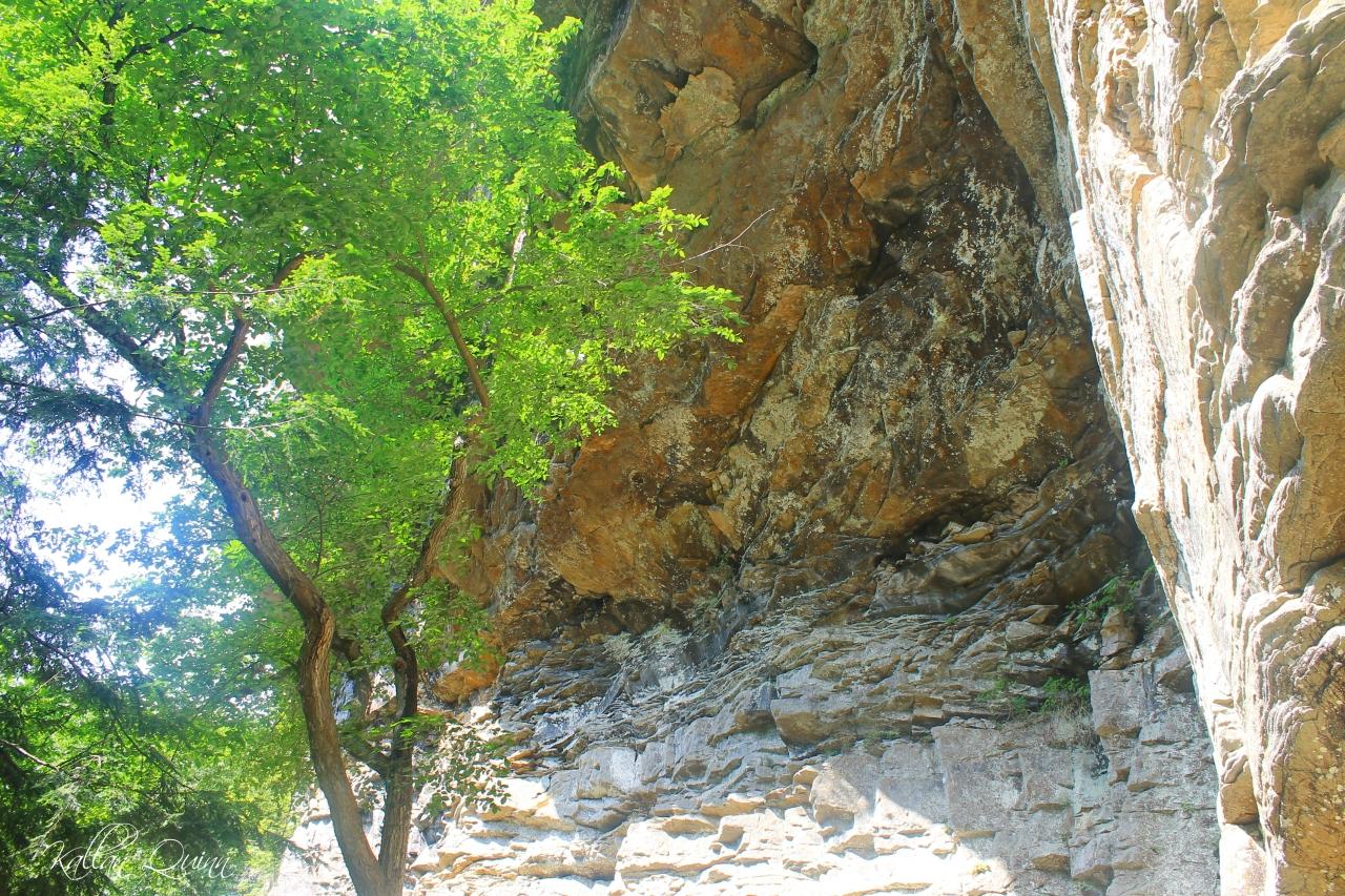 Fall Creek Falls 4