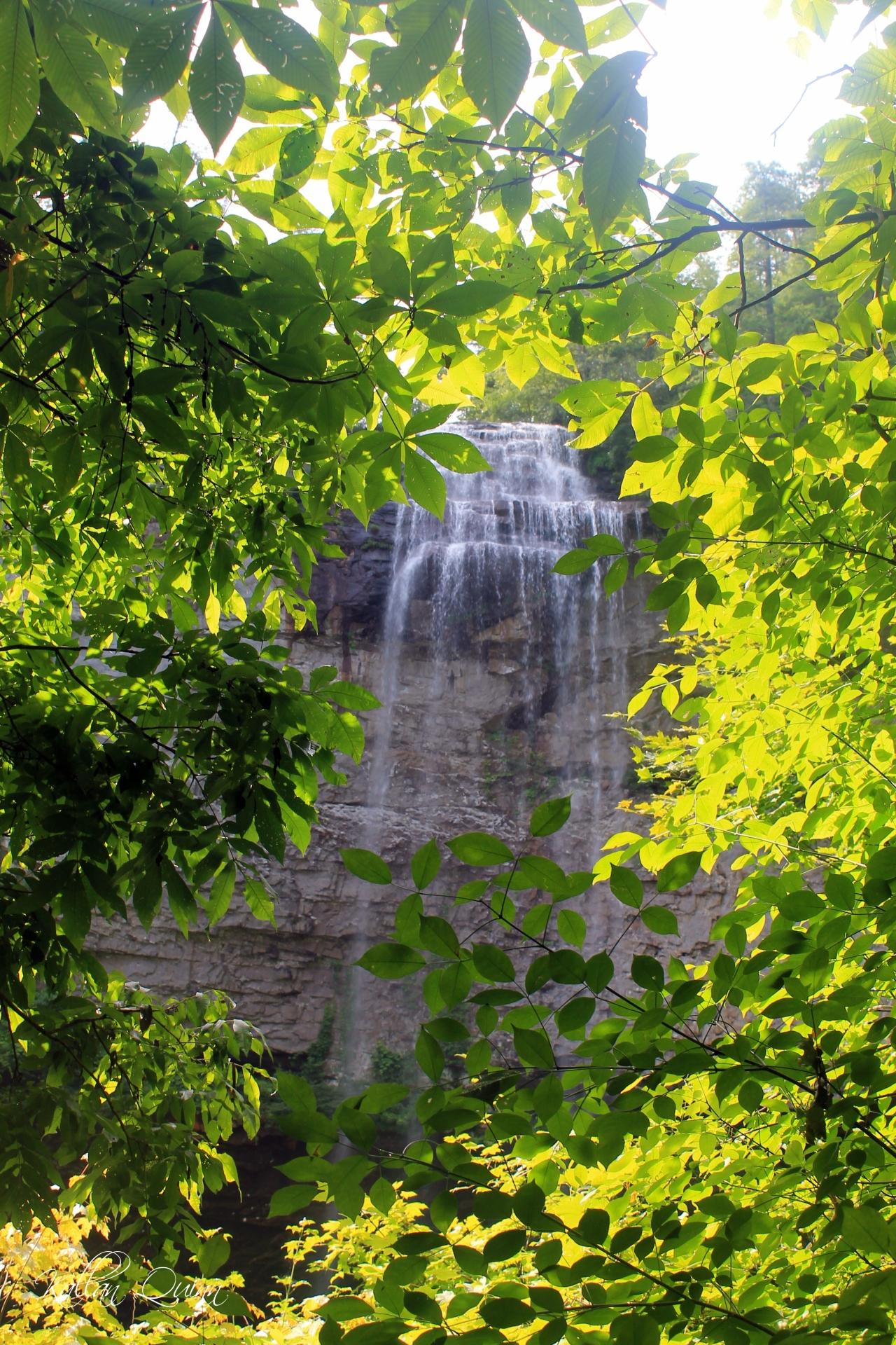 Fall Creek Falls 5
