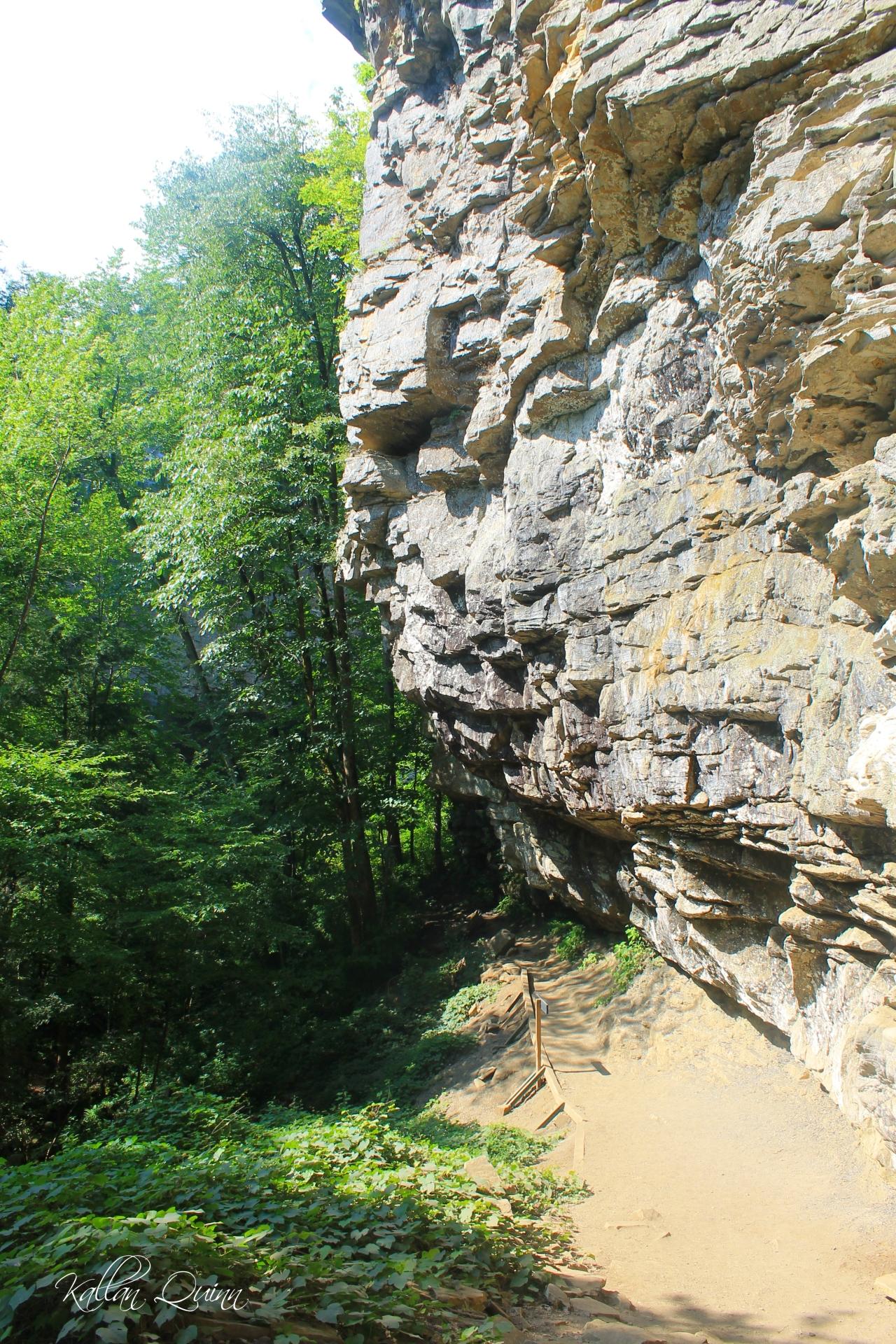 Fall Creek Falls 6