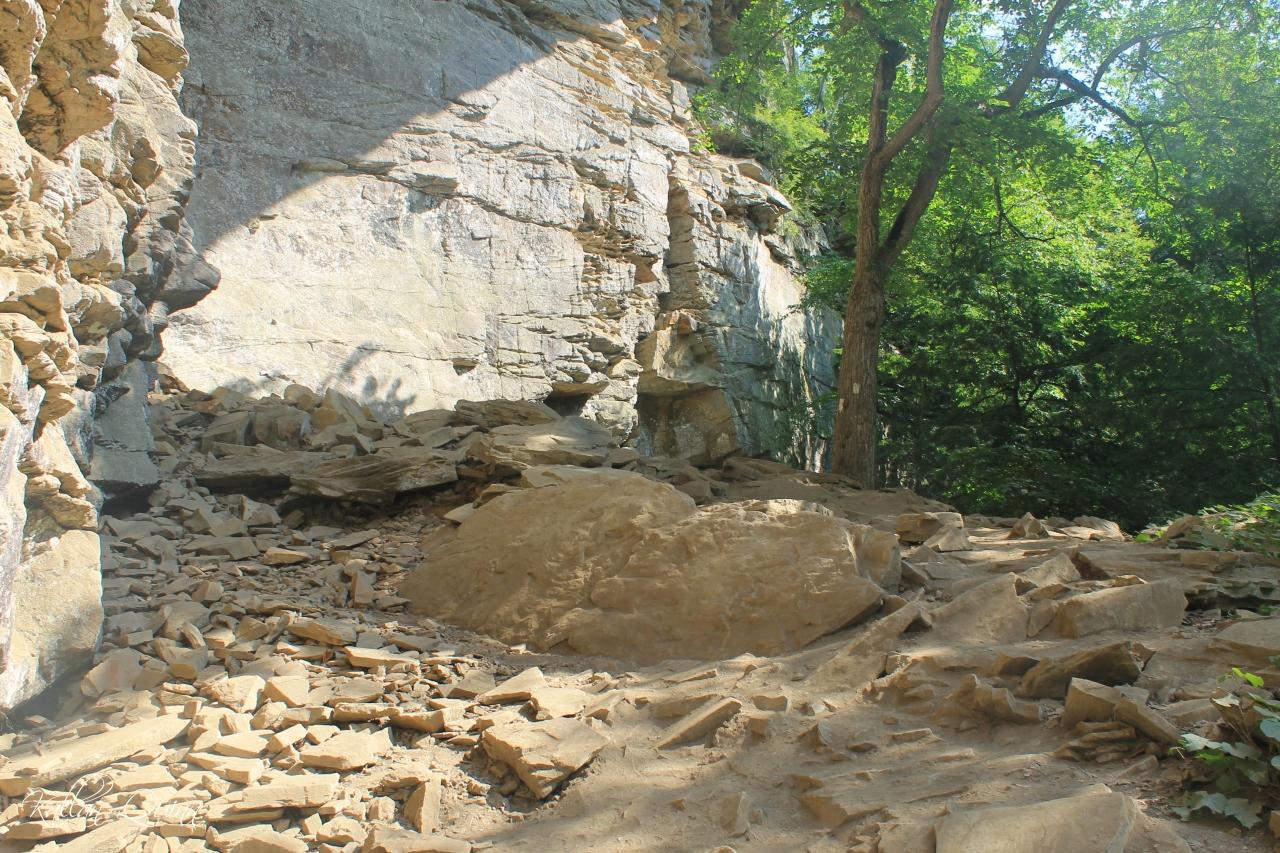 Fall Creek Falls 7