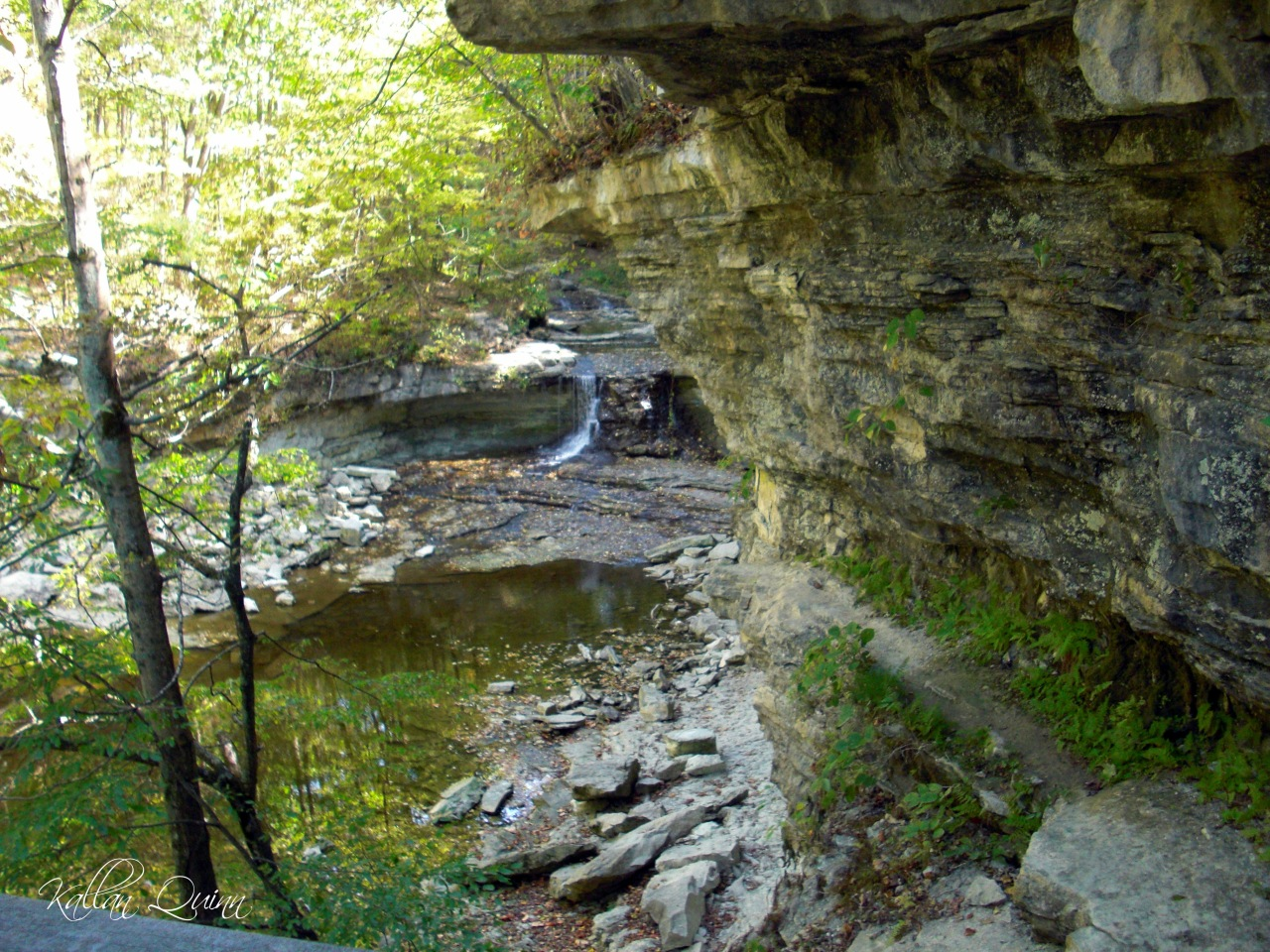 McCormicks Creek Falls View