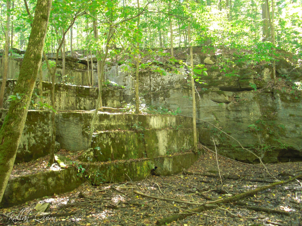 McCormicks Creek Quarry