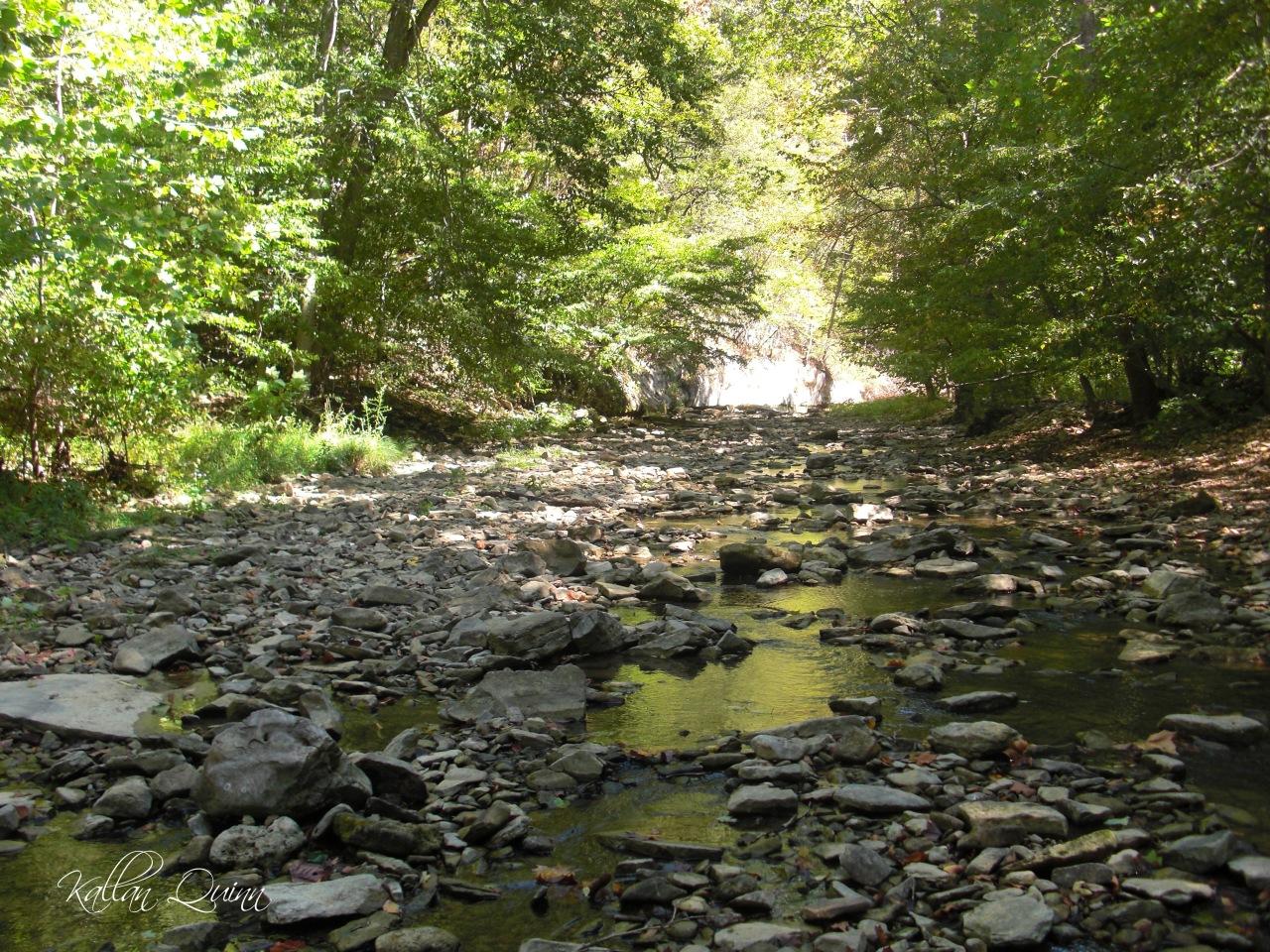 McCormicks State Park