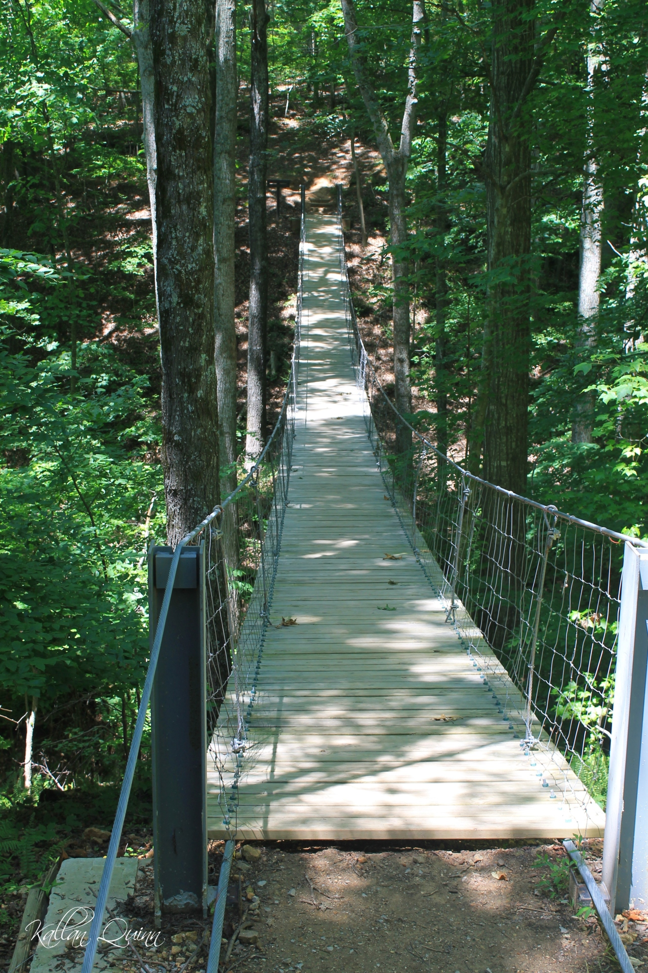 Tims Ford Suspension Bridge