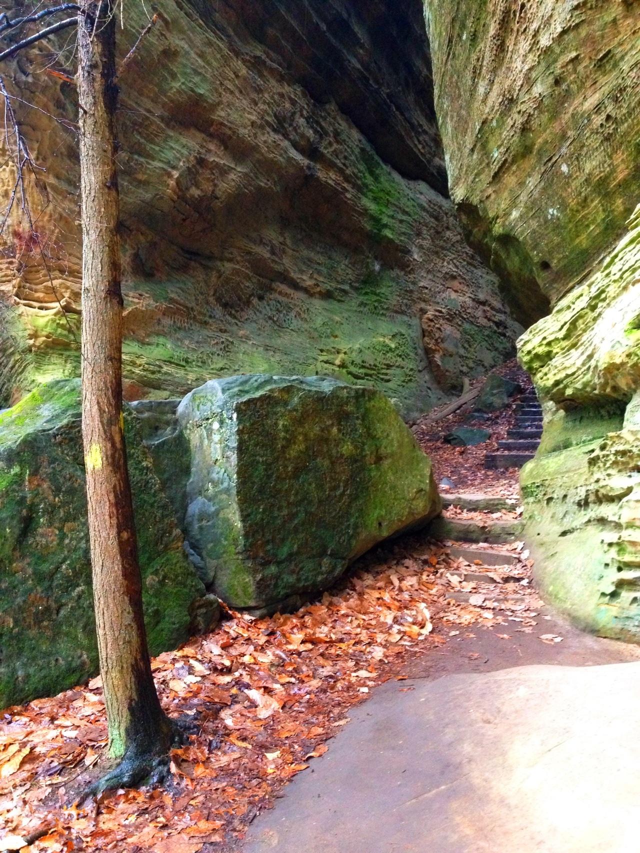Cantwell Cliffs, Hocking Hills –Ohio