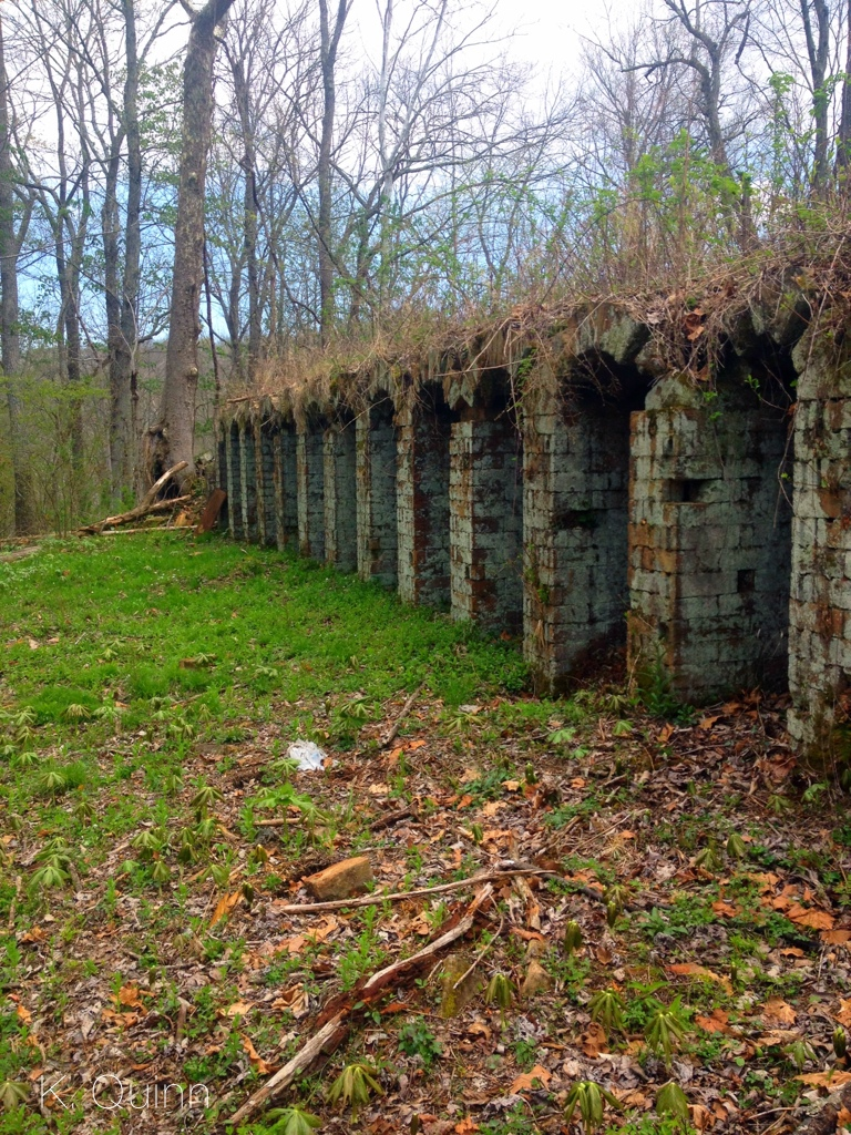 Vinton Furnace Experimental Forest – Ohio