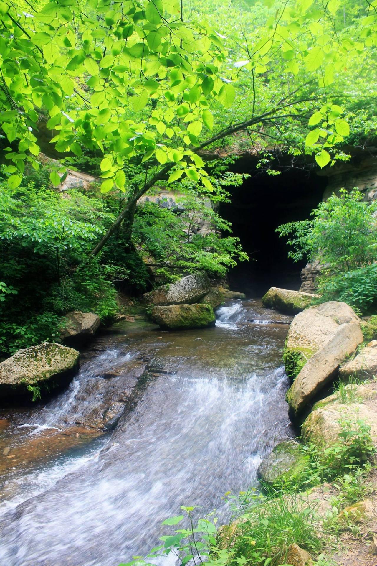 Donaldson Cave Creek