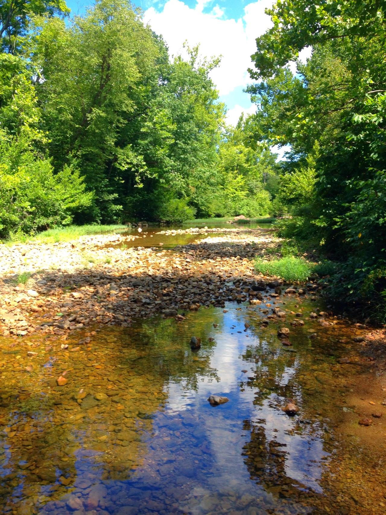 Castor River 1 (9)