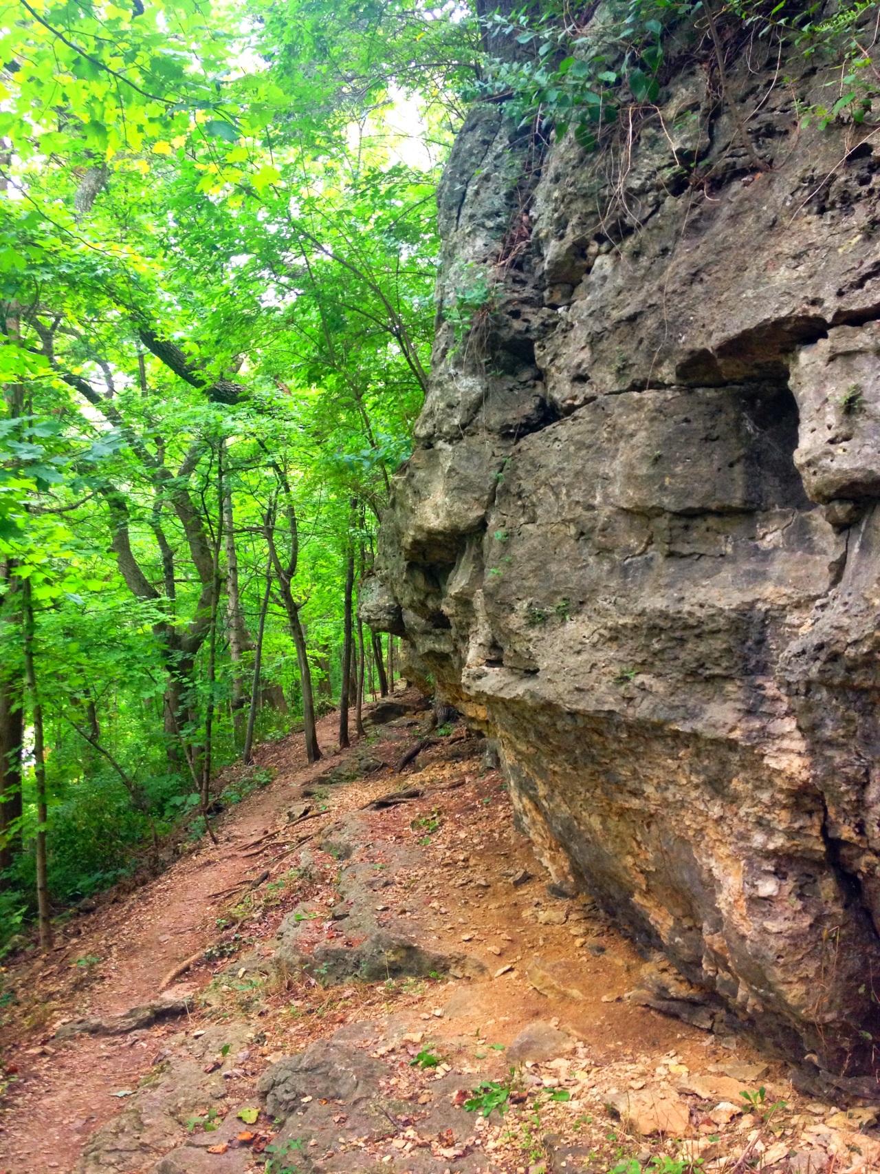 Mastodon State Historic Site (12)