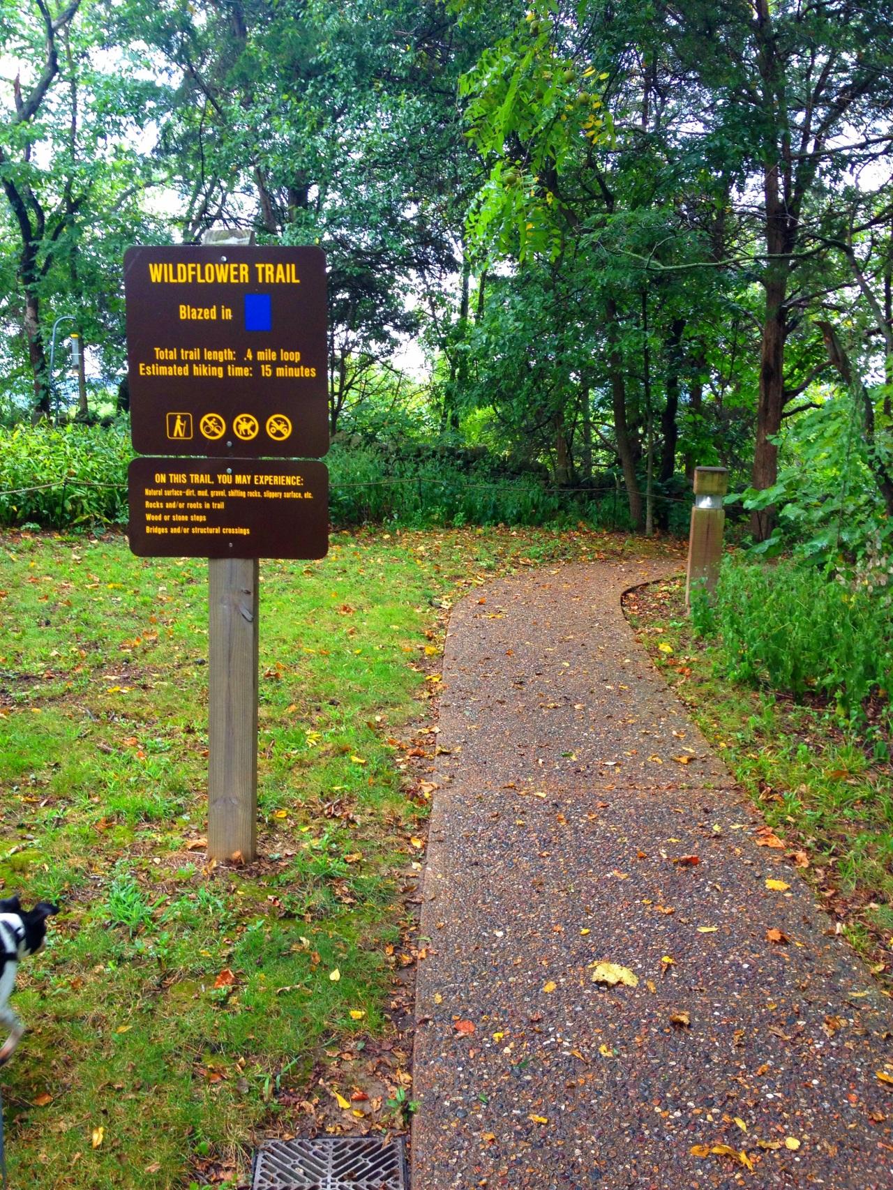 Mastodon State Historic Site (22)