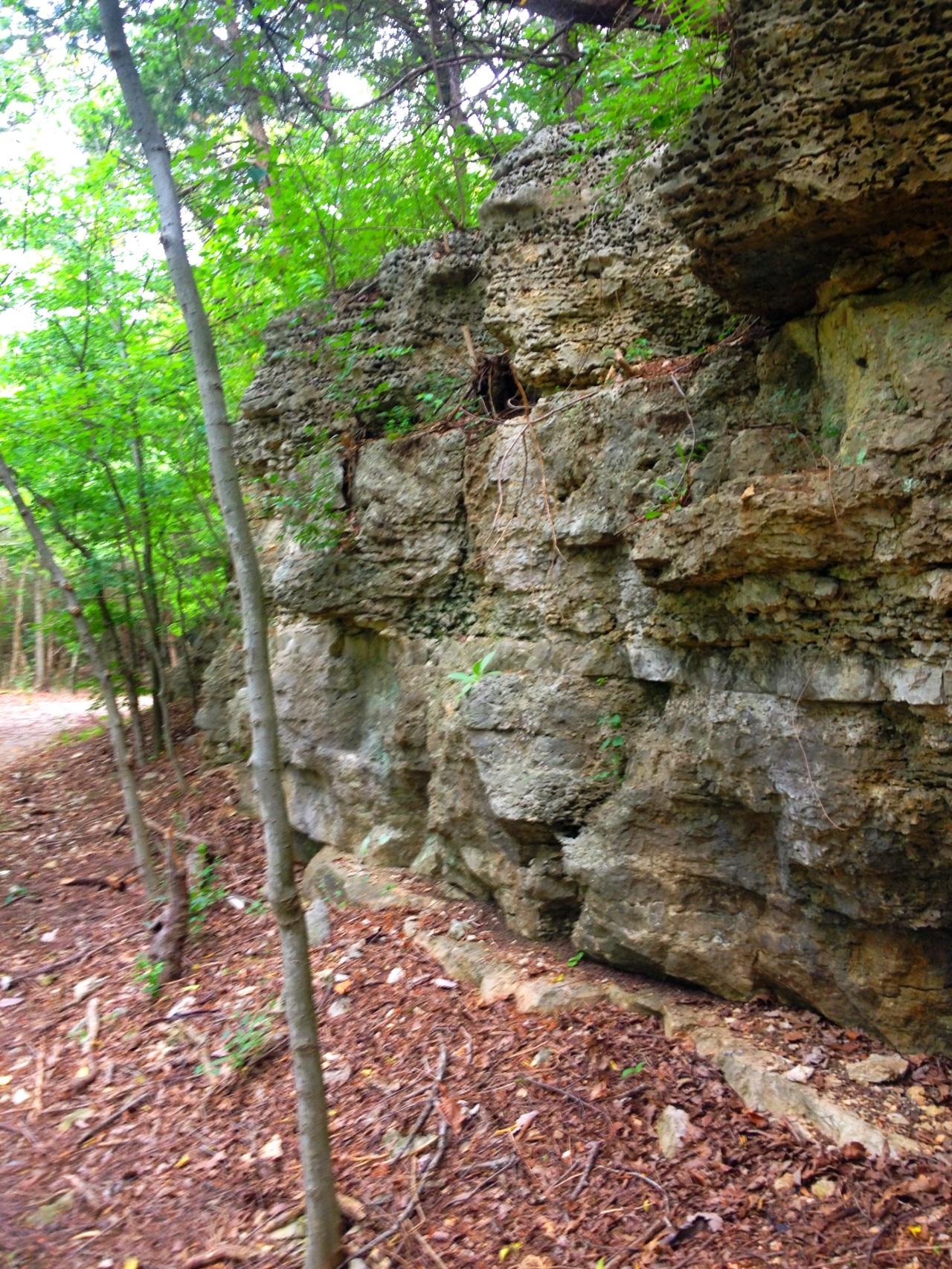 Mastodon State Historic Site (7)