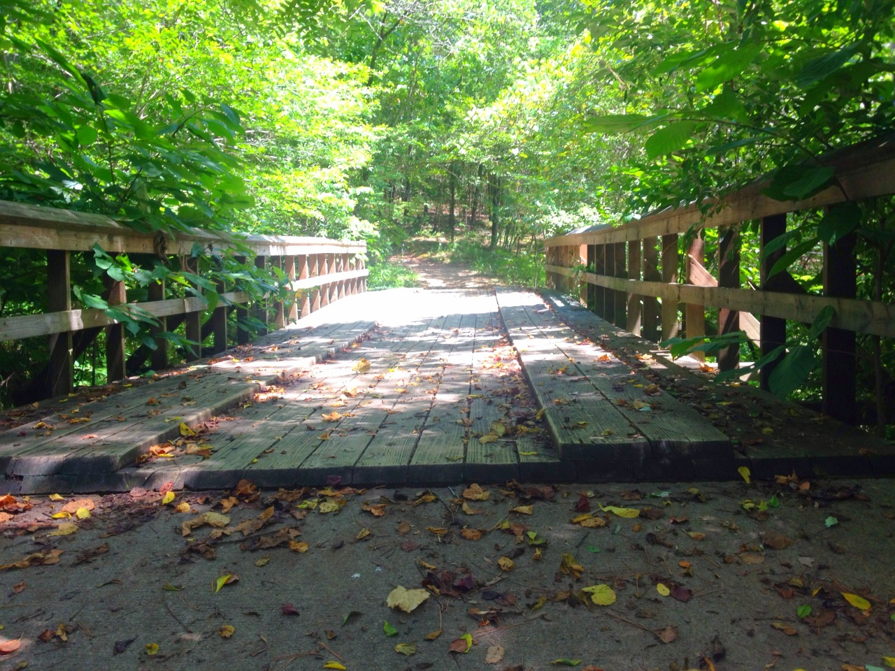 Millstream Gardens (1)