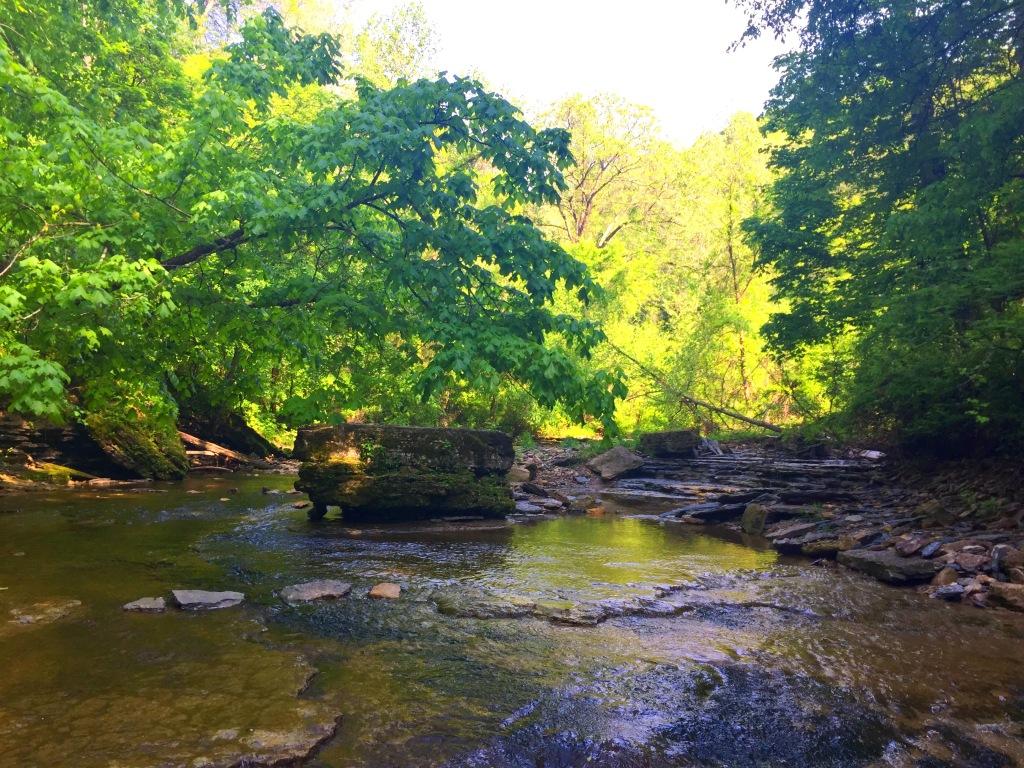 Clifty Falls (14)