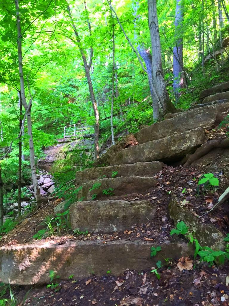 Clifty Falls (16)