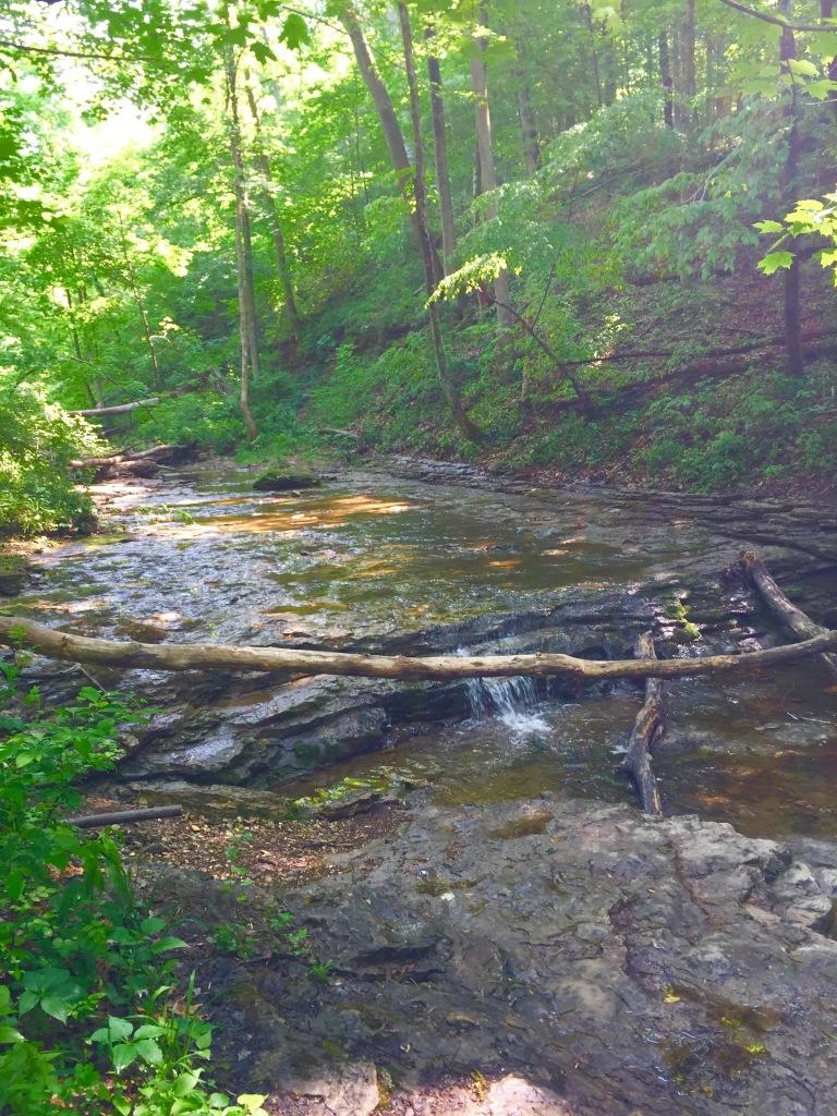 Clifty Falls (23)