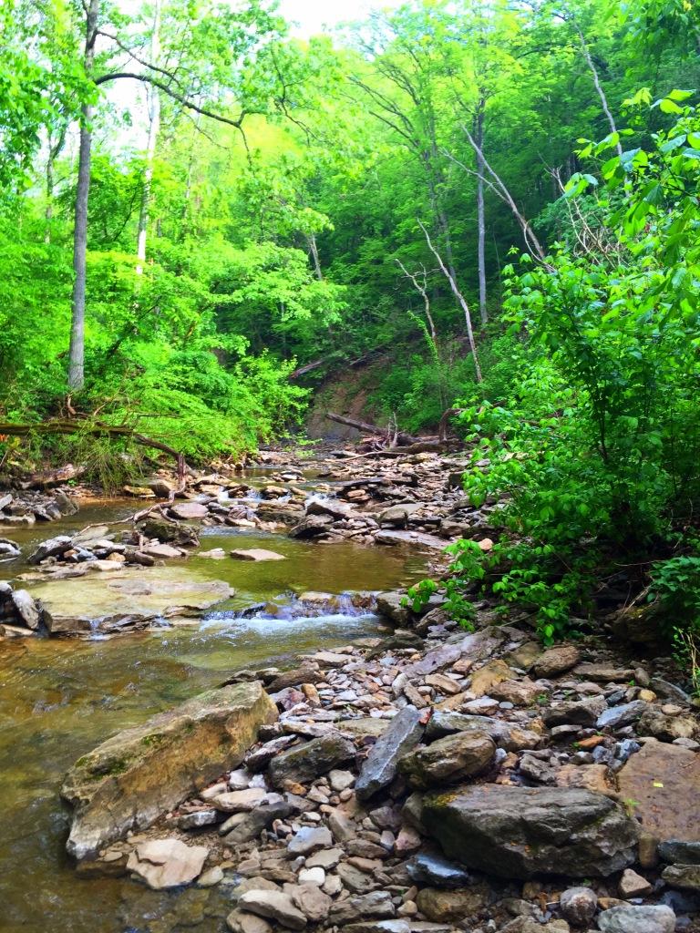 Clifty Falls (9)