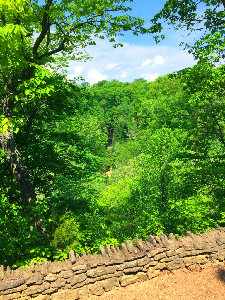Clifty Falls Lookout