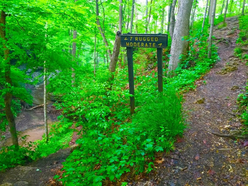 Clifty Falls Trail 7 (10)