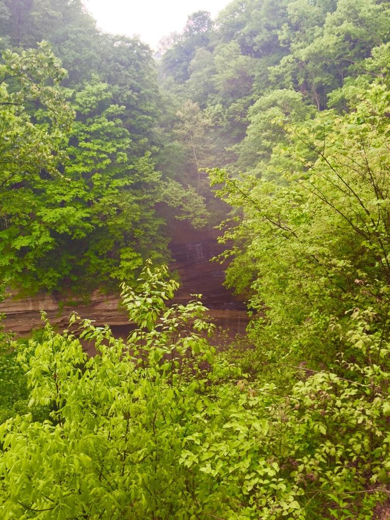 Clifty Falls Trail 7 (2)