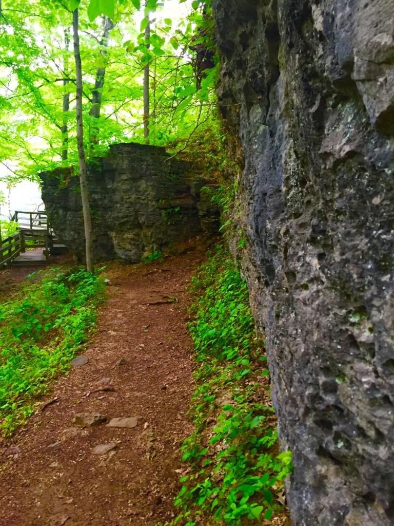 Clifty Falls Trail 7 (4)