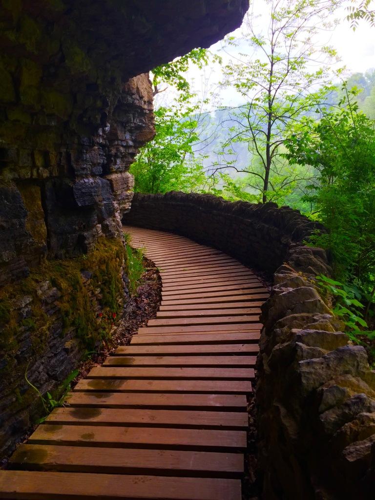Clifty Falls Trail 7 (5)