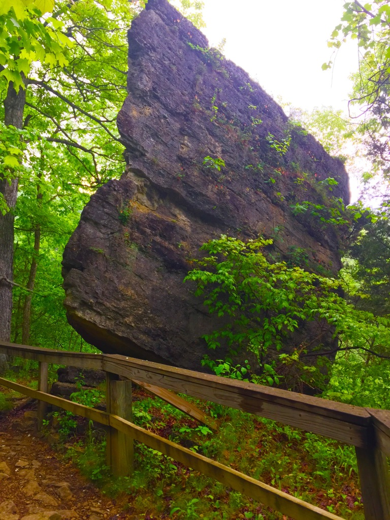 Clifty Falls Trail 7 (7)