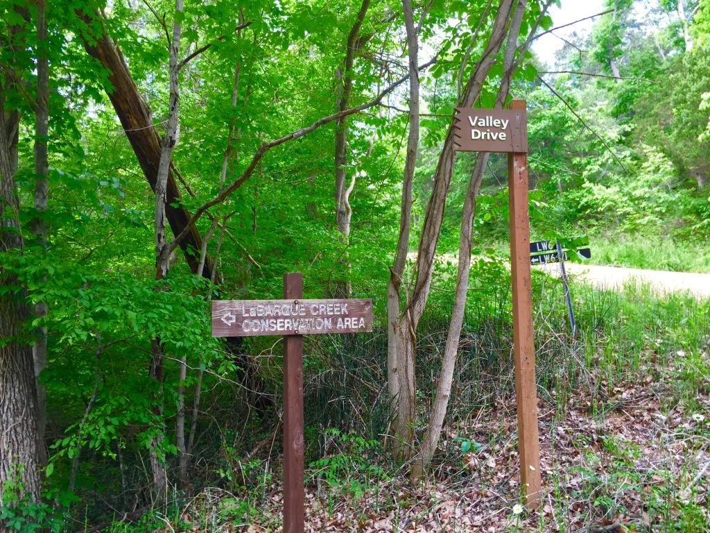 LaBarque Creek (1)
