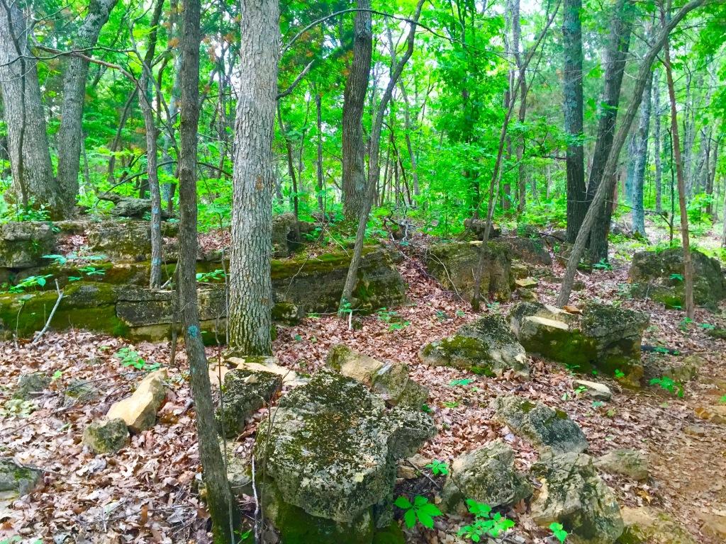 LaBarque Creek (10)