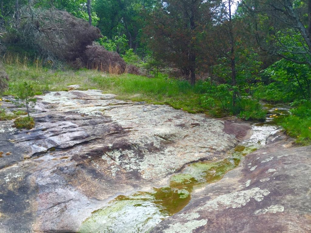 LaBarque Creek (14)
