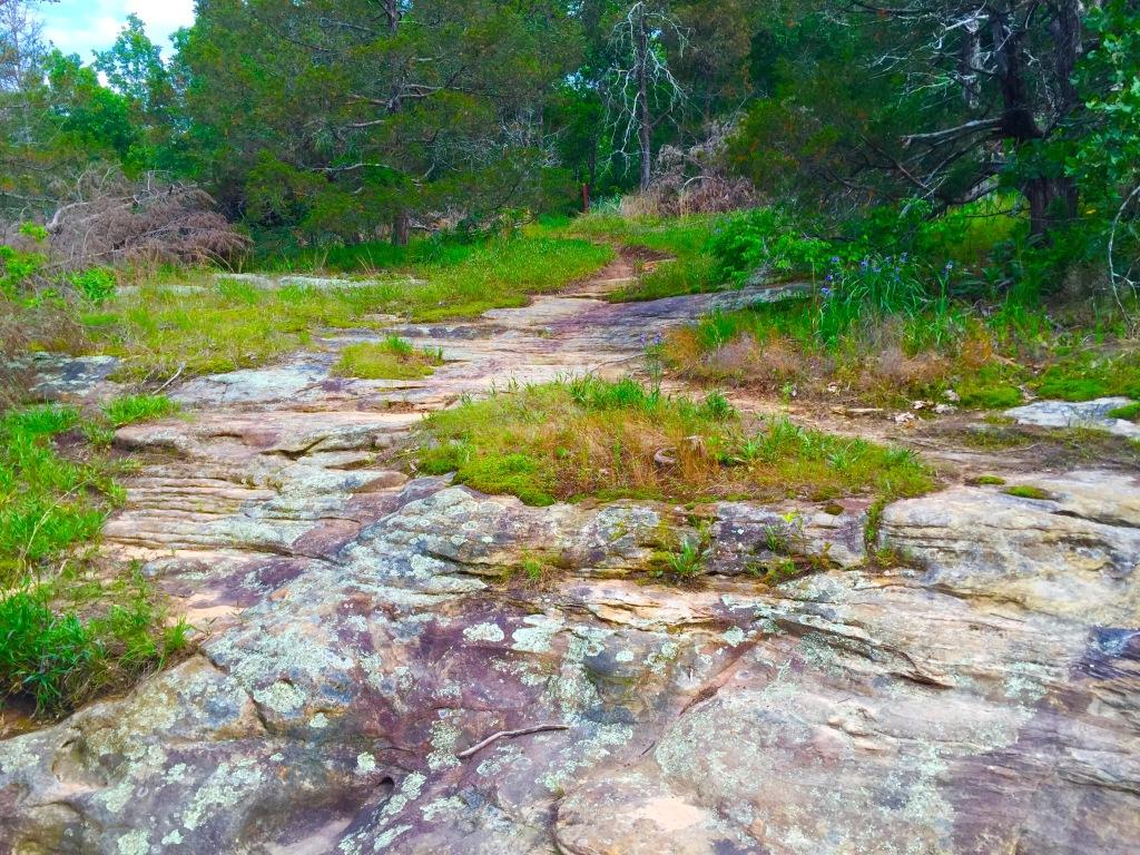 LaBarque Creek (15)