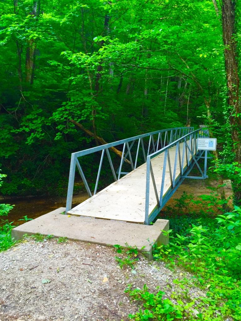 LaBarque Creek (3)