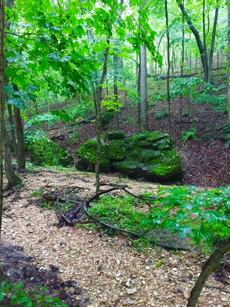 Rockwoods (3)