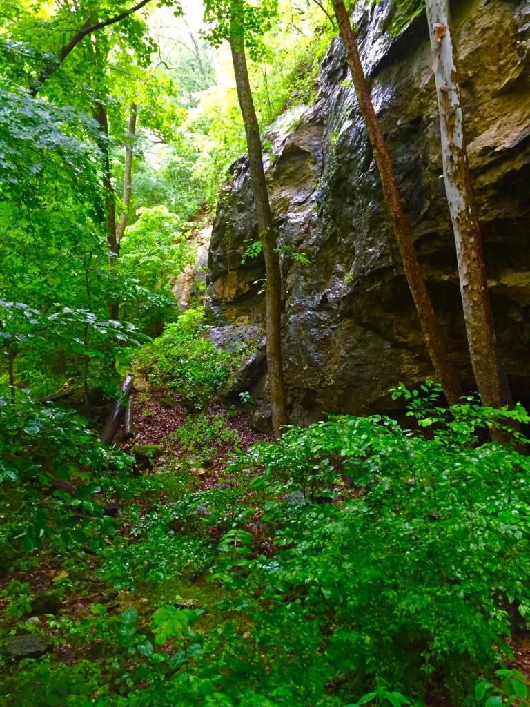 Rockwoods (6)