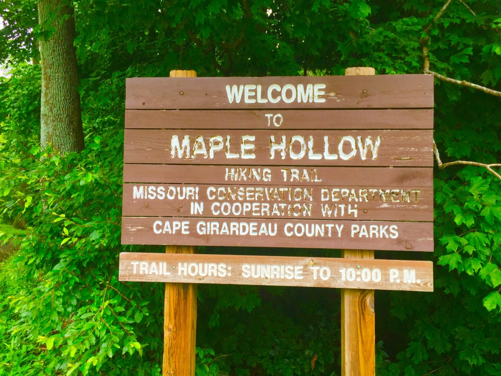 Maple Hollow (1)