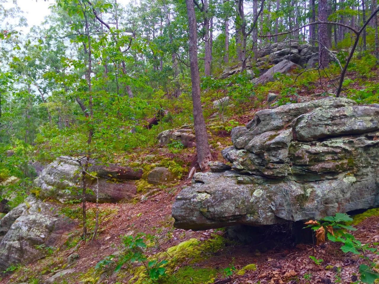Hickory Canyons (12)