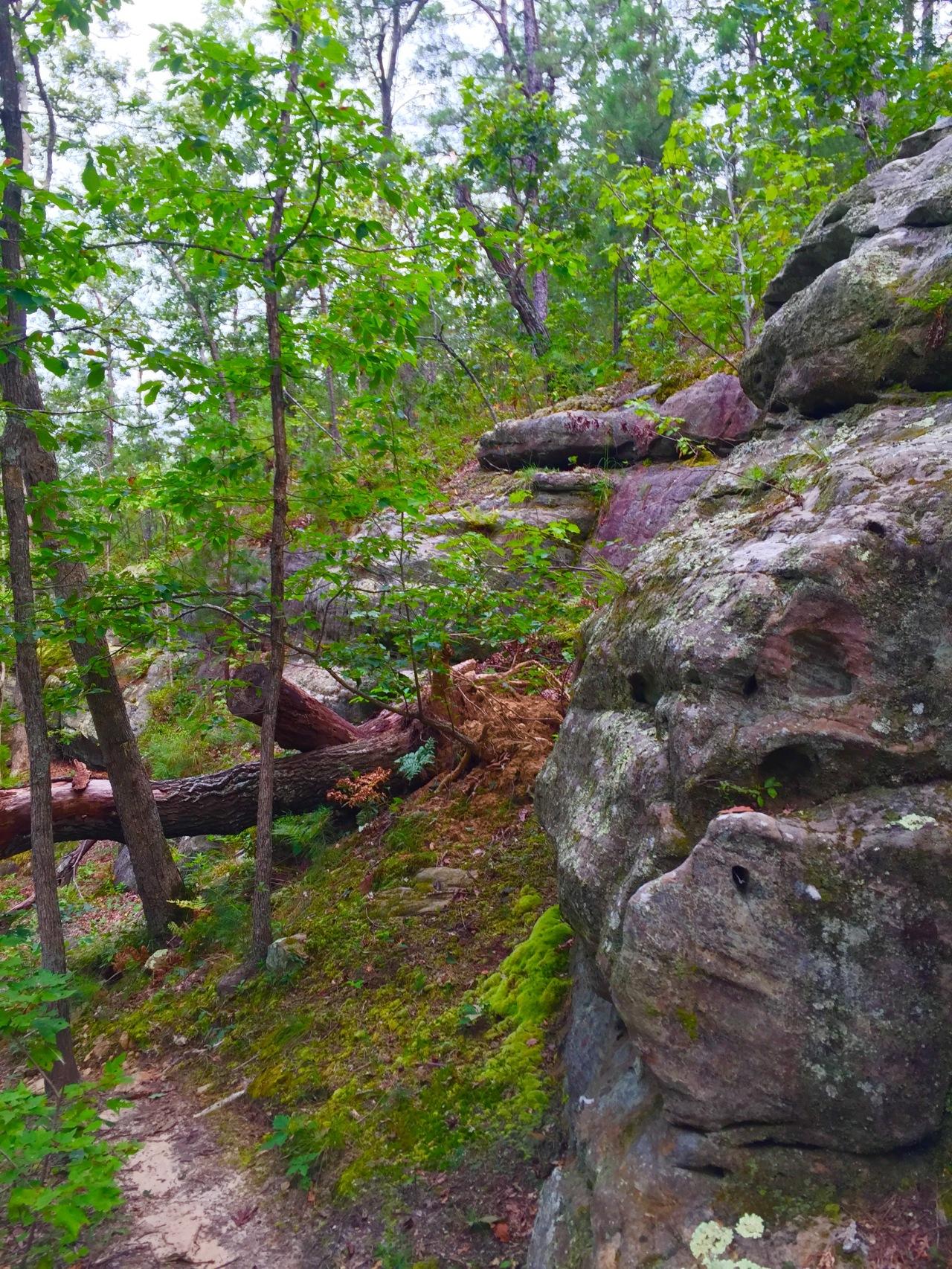 Hickory Canyons (13)