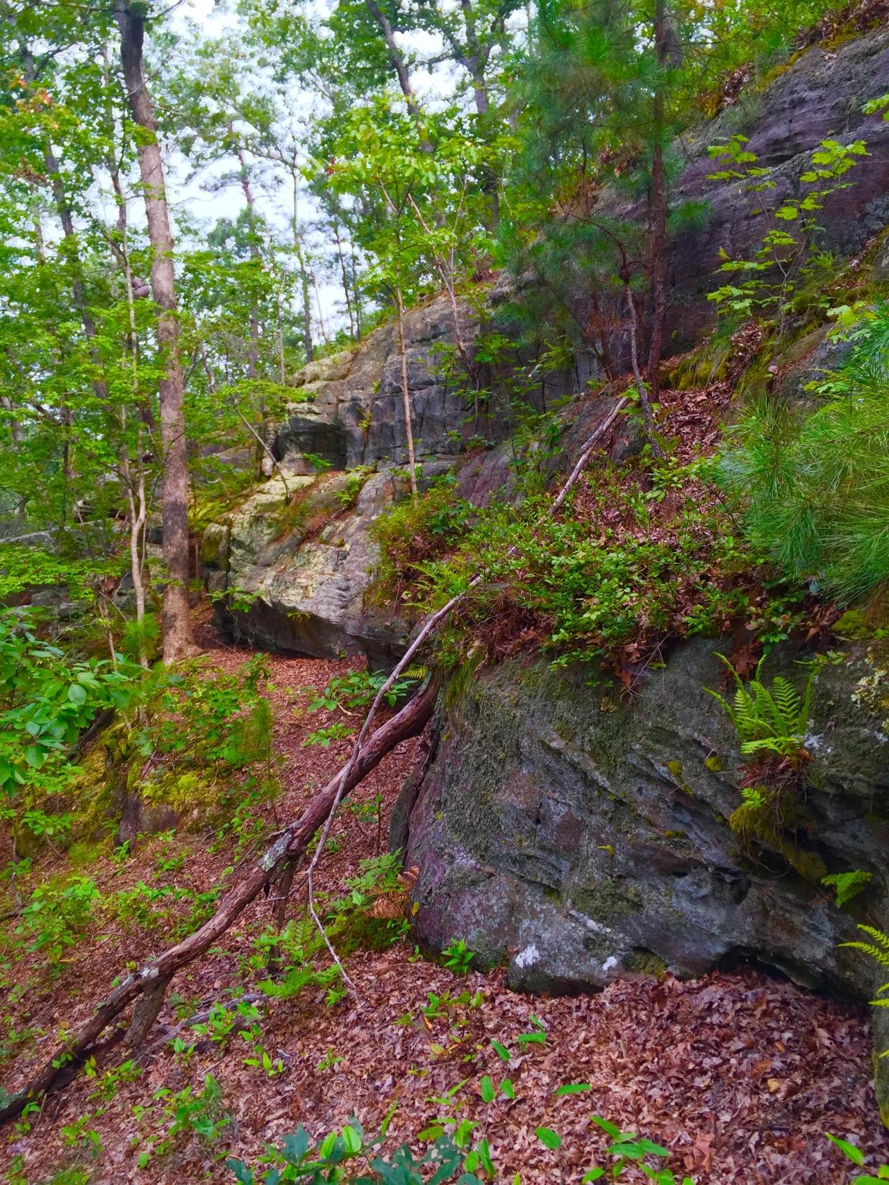 Hickory Canyons (14)