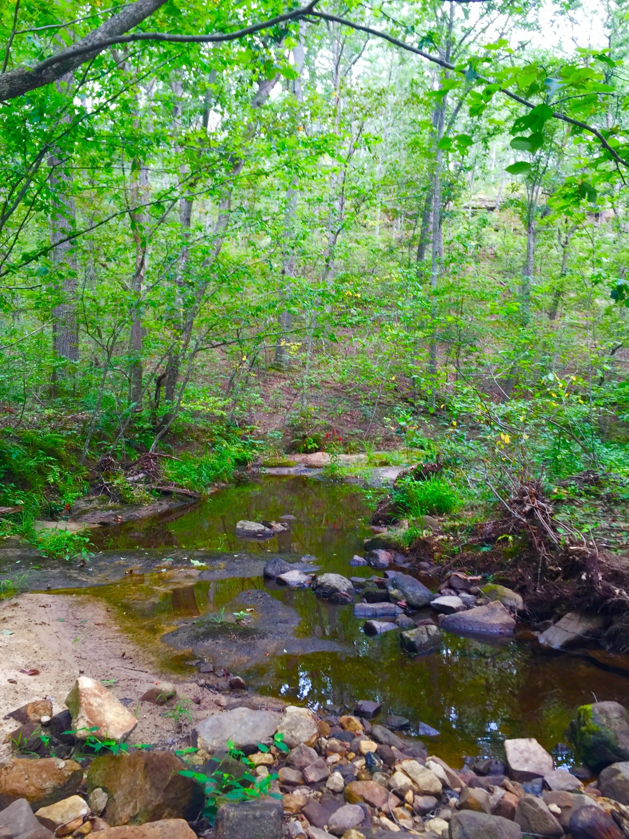 Hickory Canyons (3)