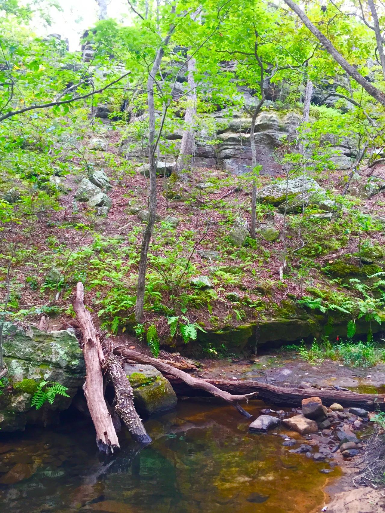 Hickory Canyons (4)