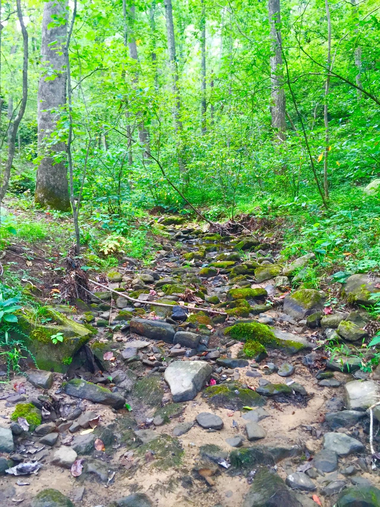 Hickory Canyons (5)