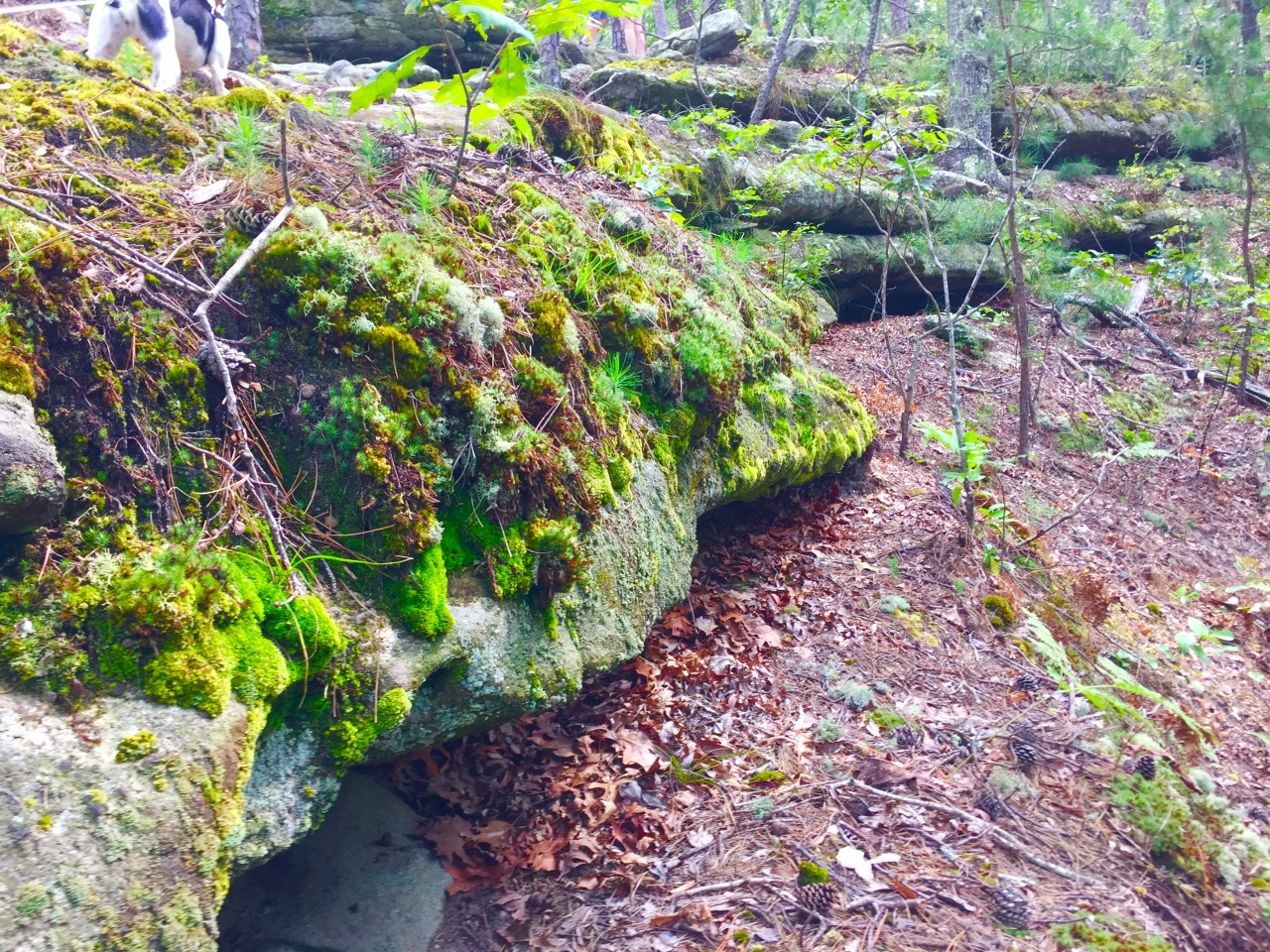 Hickory Canyons (7)