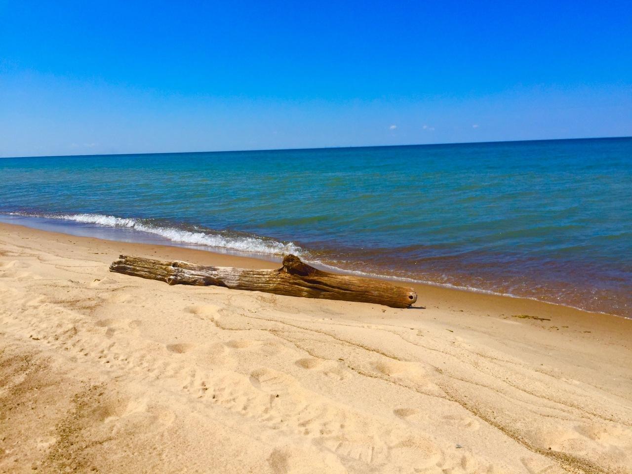 Indiana Dunes (12)