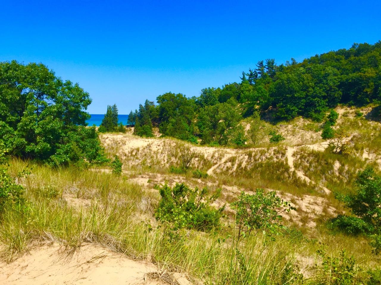 Indiana Dunes (2)