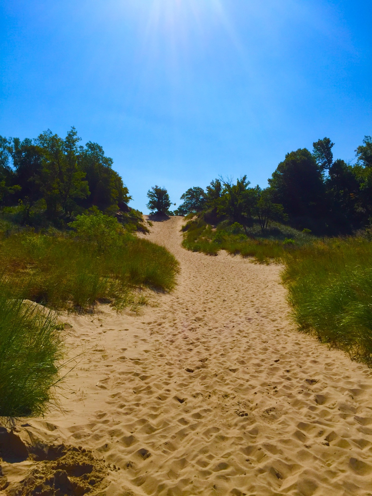 Indiana Dunes (37)