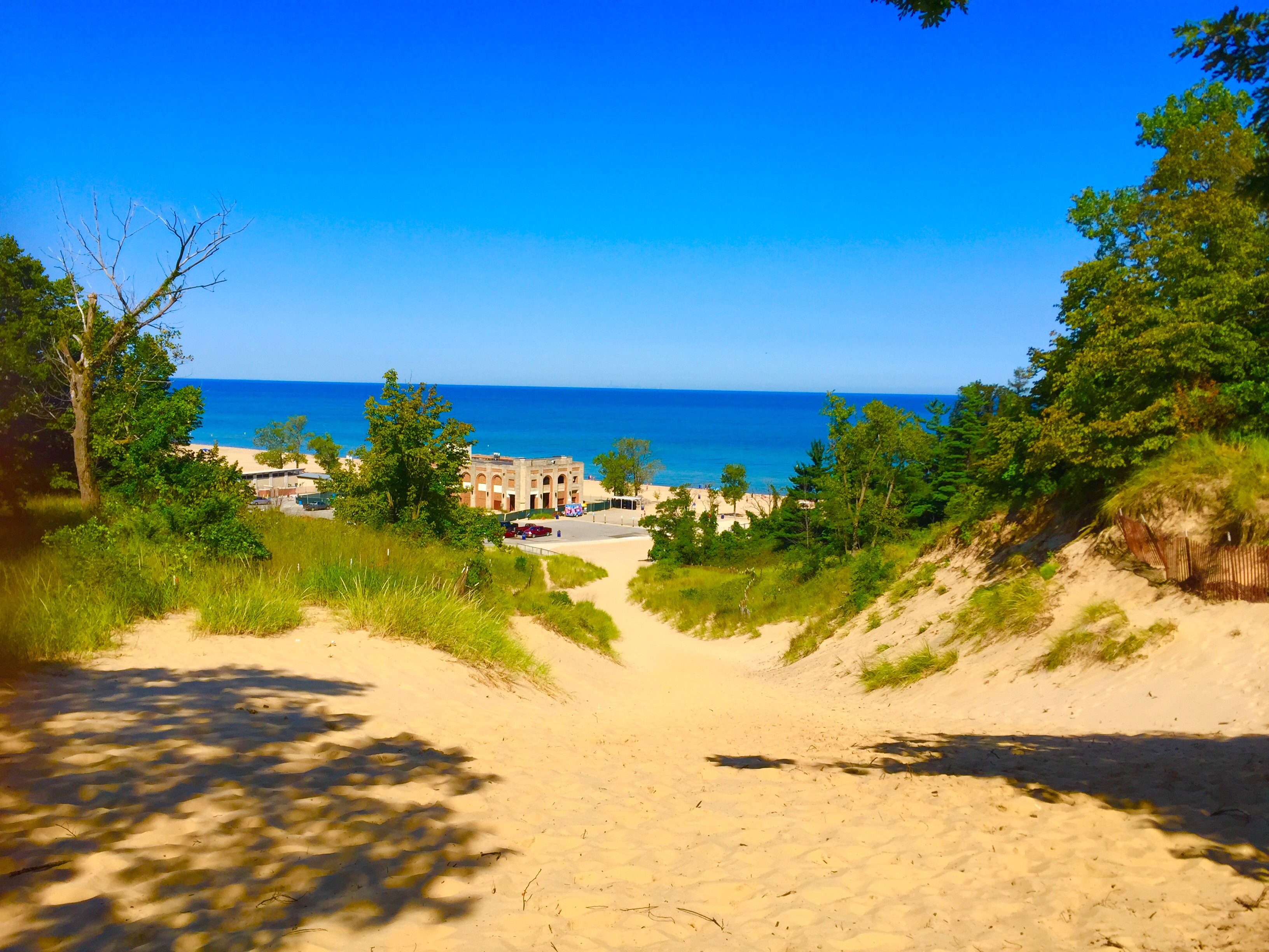 Indiana Dunes 38 Planned Spontaneity