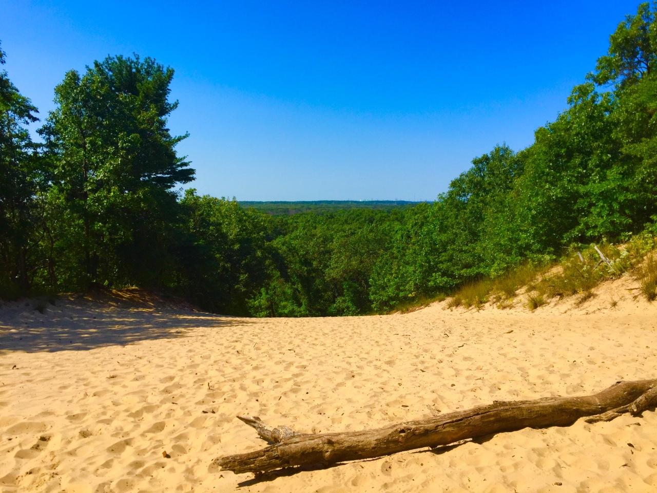 Indiana Dunes (45)